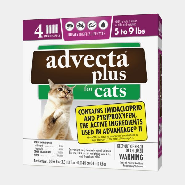 Advecta Plus for Cats product image (5 to 9 lbs size)