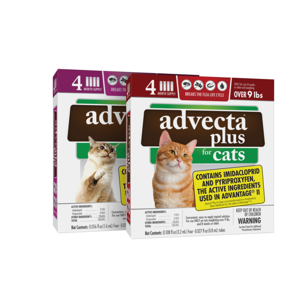 Advecta Plus for Cats product image